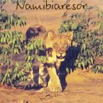 Namibiaresor