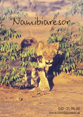 namibiaresor_1_280x396